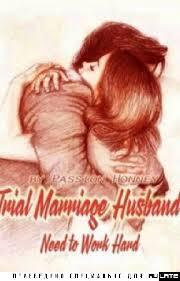 Модель в испытательном браке скачать все главы Модель в испытательном браке скачать все главы